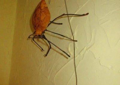 Artisan sculpture of a stink bug