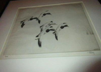 """Canvas"" by Robert F. Bishop"