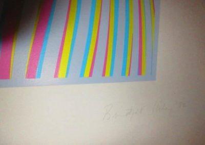 """Elapse"" 1982 Bridget Riley  Screenprint in colors on BFK Rives paper"